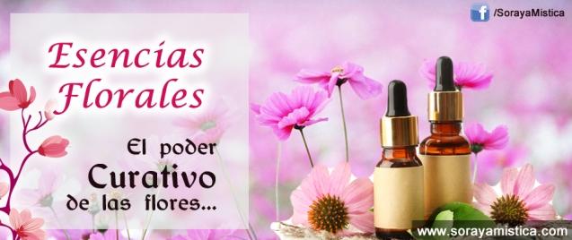 esencias-florares-sm